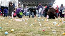 Easter Egg Hunt.jpg